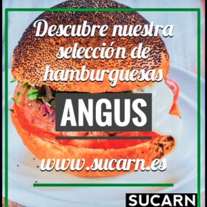 Descubre-nuestras-hamburguesas-ANGUS